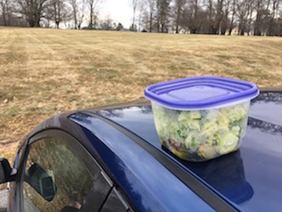 perched salad